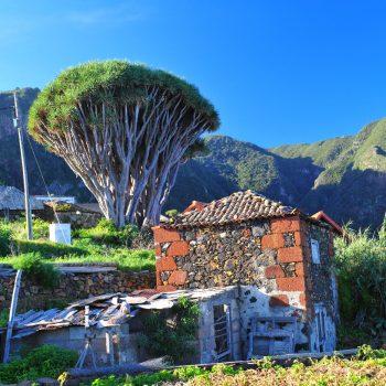 Taxi La Palma, tours por la isla bonita