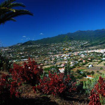 Taxi La Palma, tours turísticos breña Alta